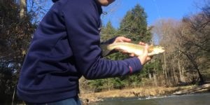PA Mentored Youth Trout Day - This Weekend!
