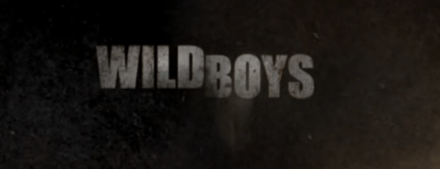 Wild Boys TV Series