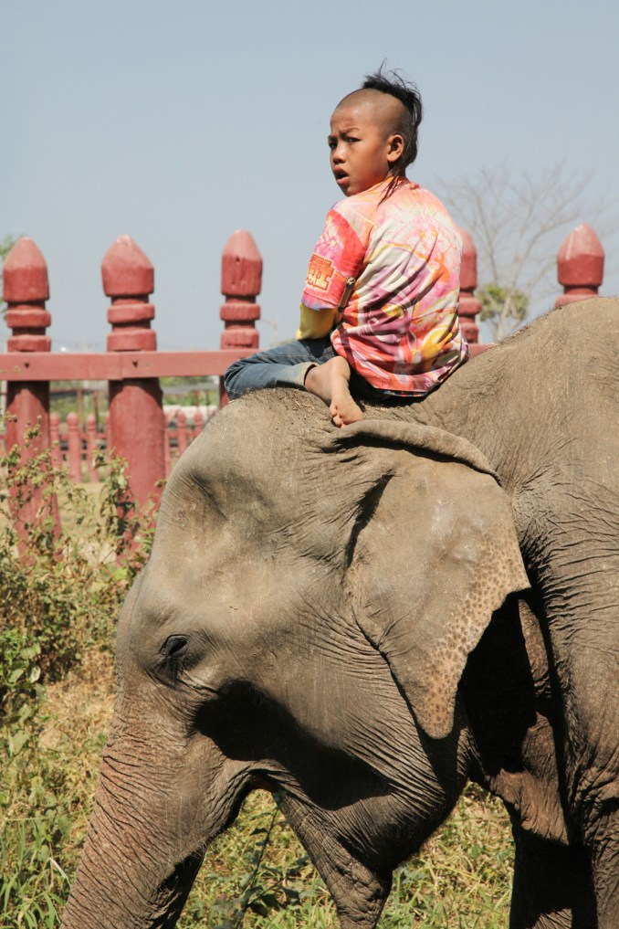 Goh (Thailand)