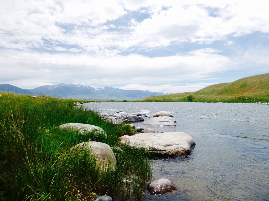 Madison River Womens trip, Lori Ann Murphy, Reel Women Flyfishing Adventures
