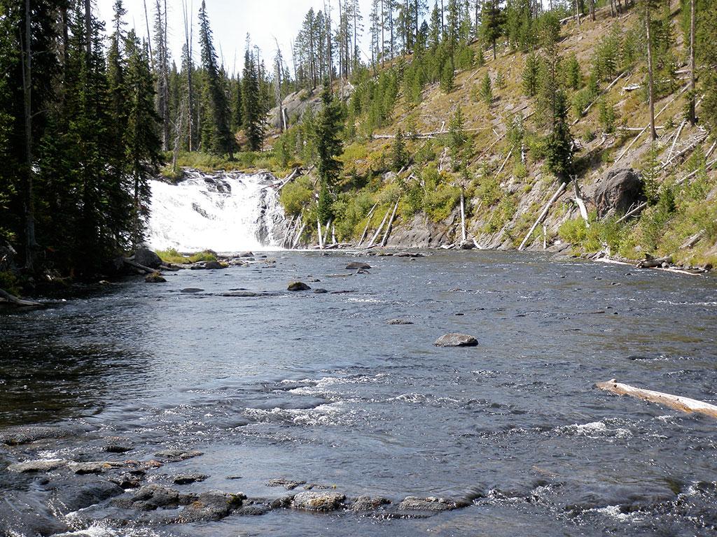 Yellowstone River, Madison River, Henrys Fork River, flyfishing travel, Lori-Ann Murphy