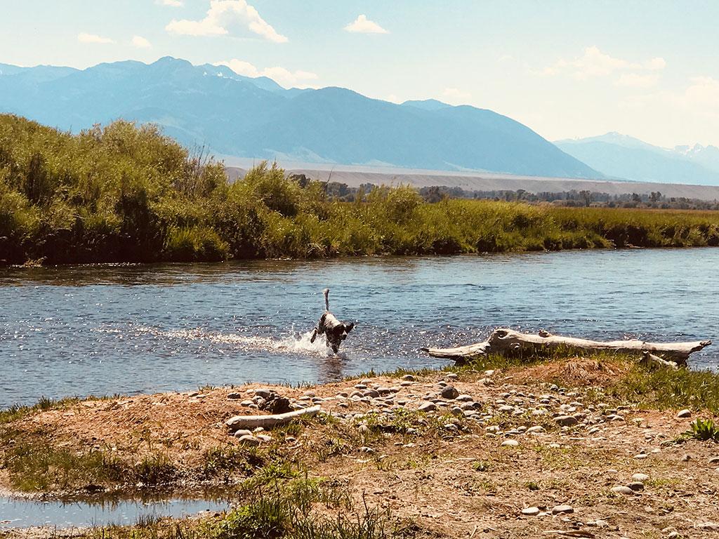 Yellowstone River, womens flyfishing trips flyfishing travel