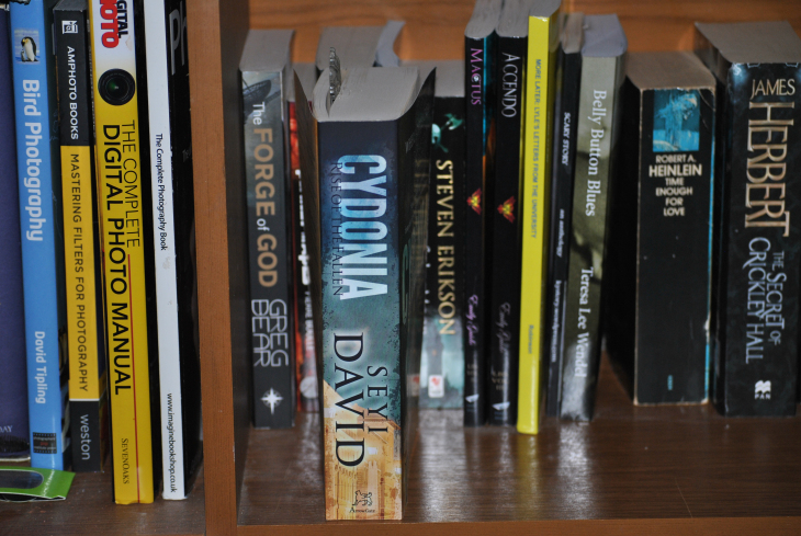 Sunday photo fiction, books