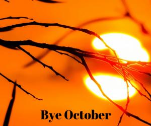 Month in rewind: October 2016
