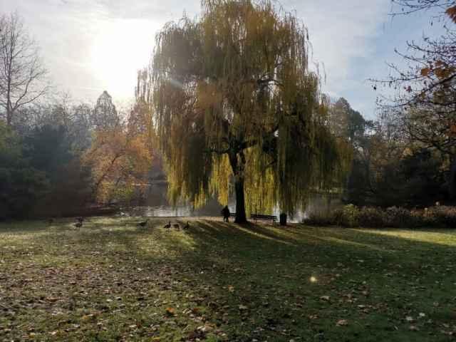 Stadtpark Gelsenkirchen