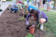Workshop participants plant the rain garden at Hazelglen Drive.