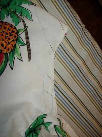 Pineapple Express YoSelf 4