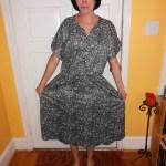 Day 80:  Pleasantville Dress