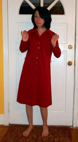 Day 224:  Annie Dress 2