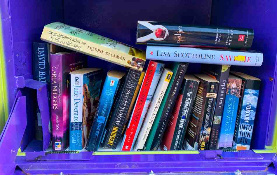 ReFashionista little free library