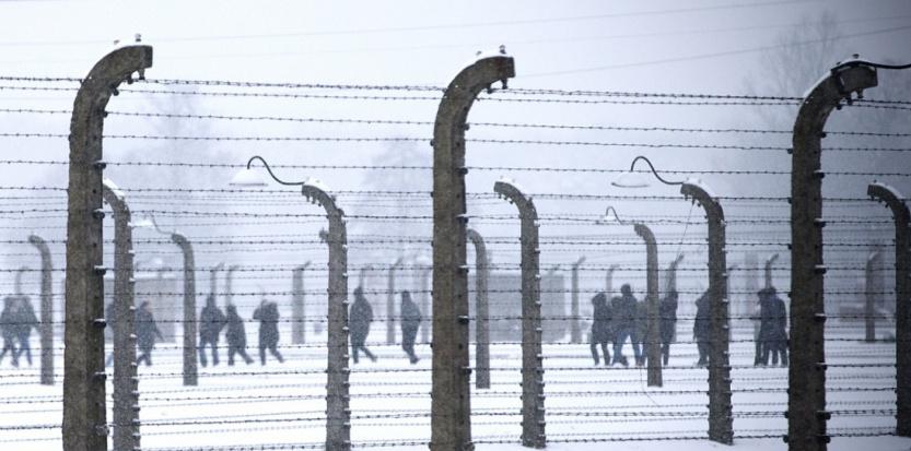 Des visiteurs derrière les barbelés d'Auschwitz-Birkenau, en janvier 2015. (JOEL SAGET / AFP)
