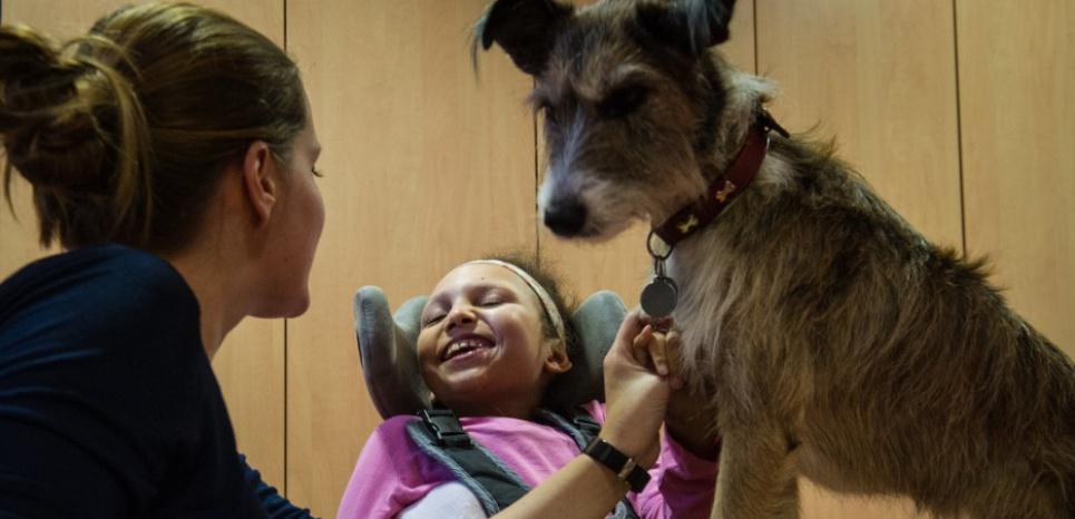 La thérapeute Emeline Chancel (à gauche) avec Chahinez (centre), lors d'une session de médiation animale avec le chien Hizzy. ©SEBASTIEN BOZON / AFP