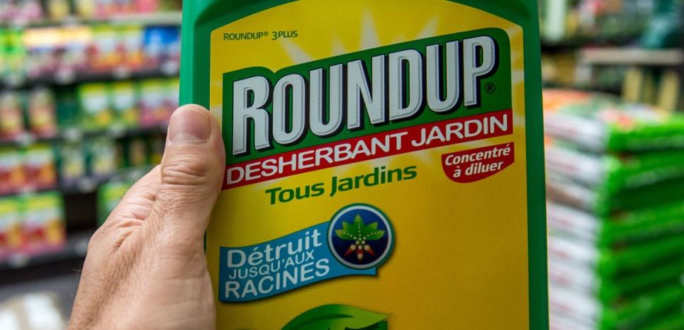 Le Roundup de Monsanto © PHILIPPE HUGUEN / AFP