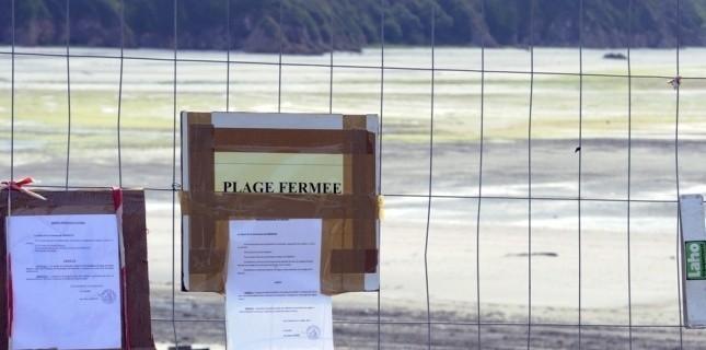 A Morieux, la plage Saint-Maurice est toujours interdite au public, dans l'attente d'analyses supplémentaires, la mairie d'envisage pas d'ouverture les jours qui viennent. (Damien Meyer - AFP)