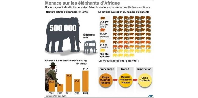 Infographie sur le braconnage des éléphants et le trafic d'ivoire de 2009 à 2013