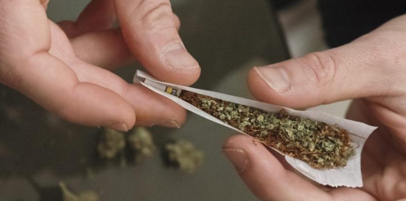Une molécule naturelle produite dans le cerveau permet de contrer les effets du cannabis. (Christophe Morin / IP3 PRESS / MAXPPP)