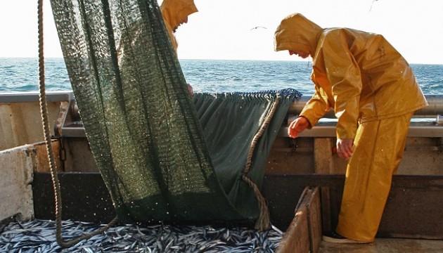 Pêche au chalut dans le Golfe du Lion, en octobre 2010 (JM.GOYHENEX/SIPA°.