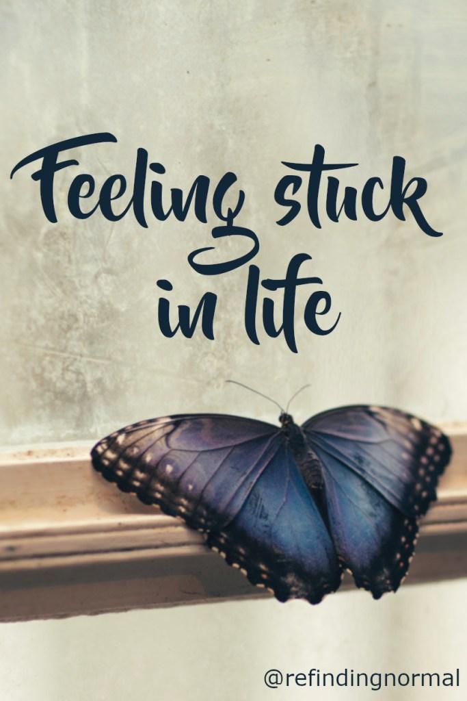 Titel op een afbeelding van een vlinder achter glas