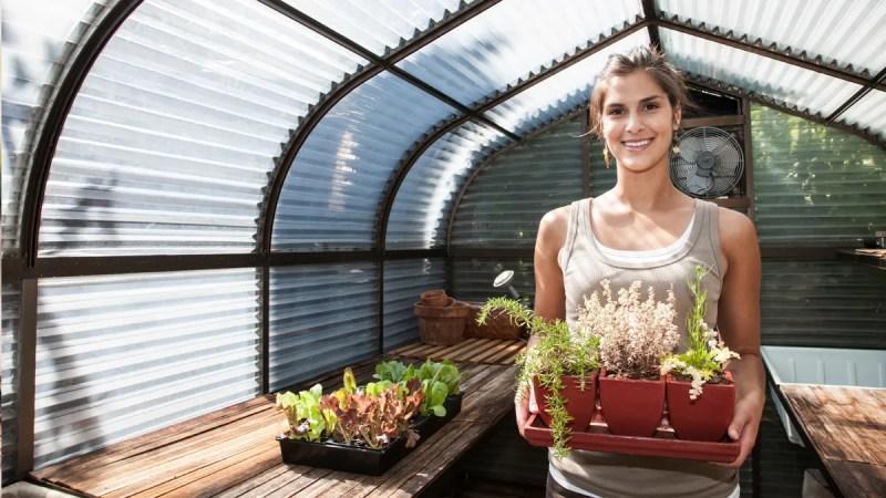 Latina woman gardening in greenhouse