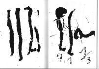 Blatt mit transformiertem Code. Albrecht/d. führte auch Bruchstriche ein, so dass neben ganzen Zahlen auch Brüche standen.