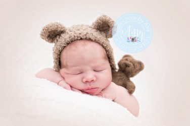 Teddy1Preview