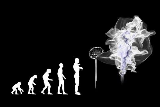 Evolution- Omar Refaea