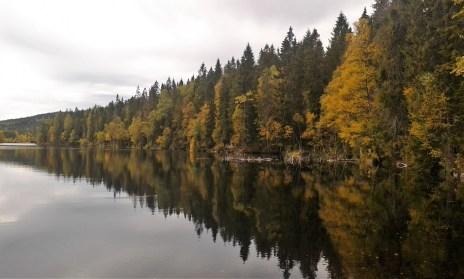 Hike to Ullevållseter, Oslo, autumn 2015 - Photograph taken by Rachael Wilner