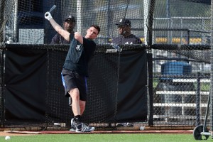 Greg Bird, New York Yankees