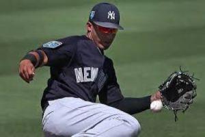 Gleyber Torres, New York Yankees (Photo: New York Post)