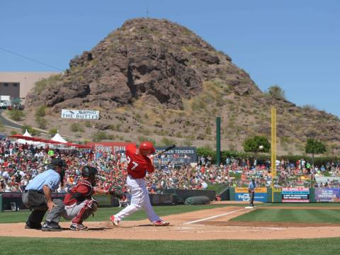 Arizona Baseball (tempetourism.com)