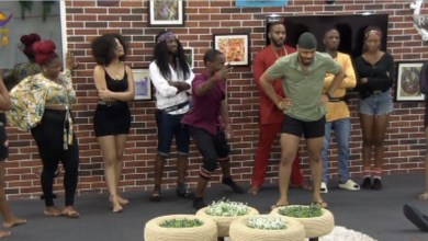 See How Housemates Represented Evicted Ones #BBNaija [Video]