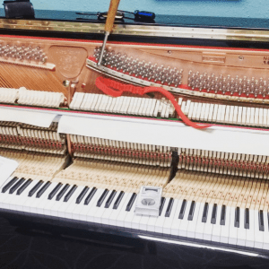 piano tuning appleton wi