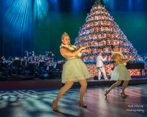 Singing Christmas Tree Edmonton.Edmonton Singing Christmas Tree Sponsorship 2016 Reflex Erp