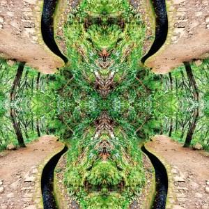 Reflexies All is in Wonderland II