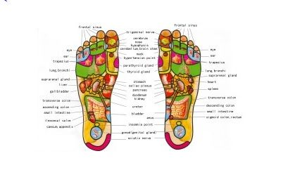 Erotic reflexology foot chart very talented