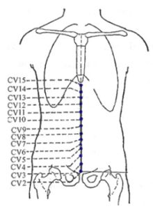 Reflex Point CV11