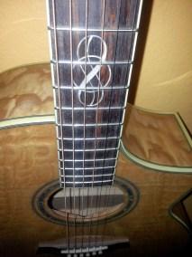 Ibanez Acoustic/Electric