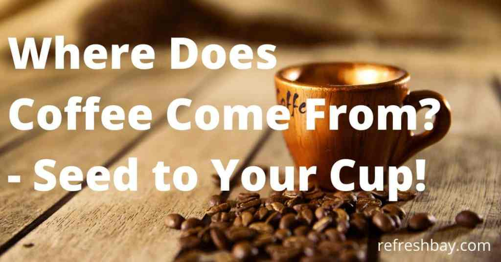 where do coffee come from?