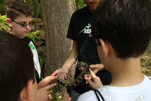 Boys-Field-Trips-Nature-Studies-Activity-Slider