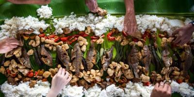 Ciguatera – Food Poisoning From Ciguatoxin
