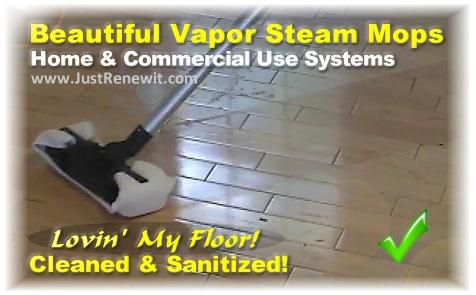 vapor steam cleaners