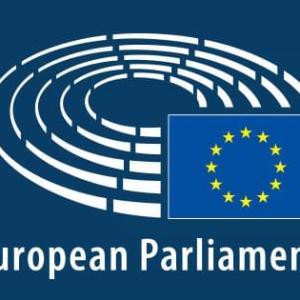 Mr Yonous Muhammadi in EU parliament