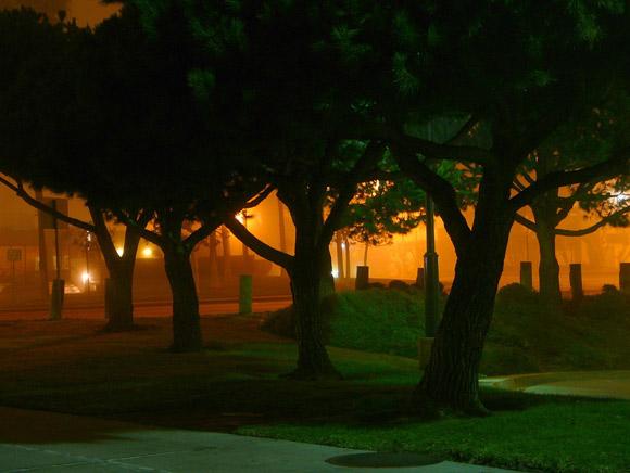 fotografia-noche-5