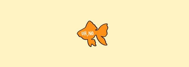 acariciar peces