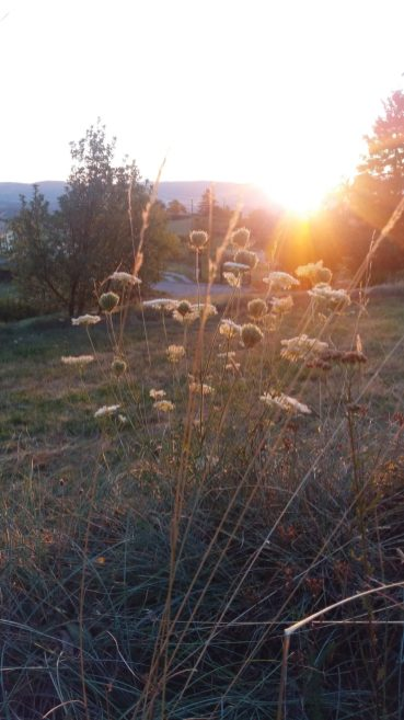 Regain Mure Ardeche - Nature10-CF