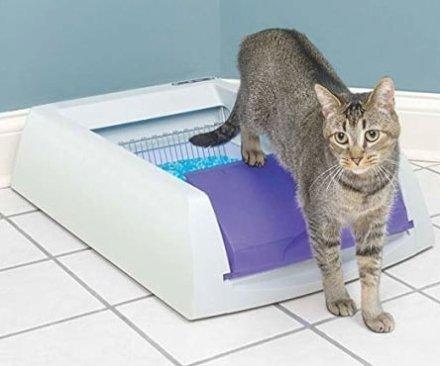 Amici Animali Casa & Ufficio  TheSelf-CleaningLitterBox-Regalo Lettiera autopulente