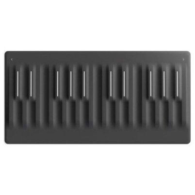 Gadget Oggetti Fantastici  ROLISeaboardBlock5D-TouchControllerEspressivoMIDINe-Regalo ROLI Seaboard Block