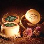 Historia y elaboración del queso