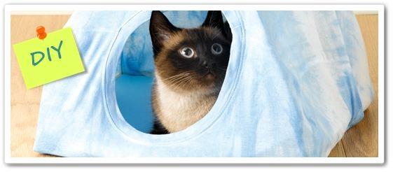 Reciclar camisetas cómo hacer una casita para gatos DIY 2