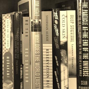 Regarp Book Blog Reviews Essays